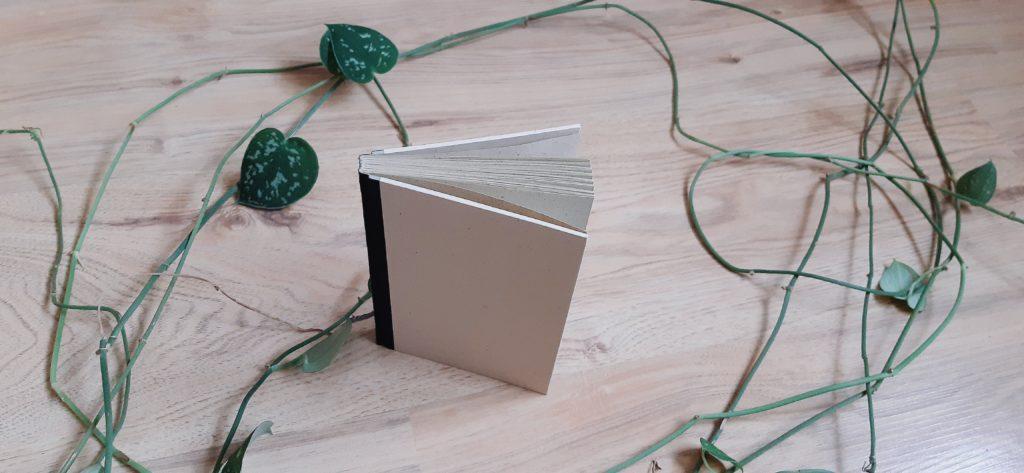 """20210820 094653 1024x473 - Vegane Bücher von Matabooks + Vorstellung """"Samaya Harmony"""""""